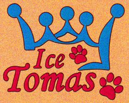 логотип ice tomas